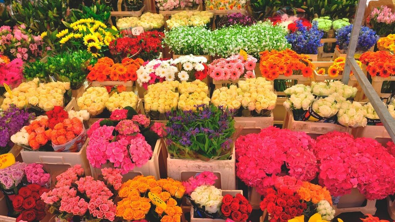 Как заработать на 8 марта на продаже цветов